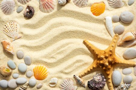 Frame from shells on sandy beach. Summer background. Top view. Copy space