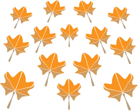 set of maple leaves in autumn the symmetrical pattern