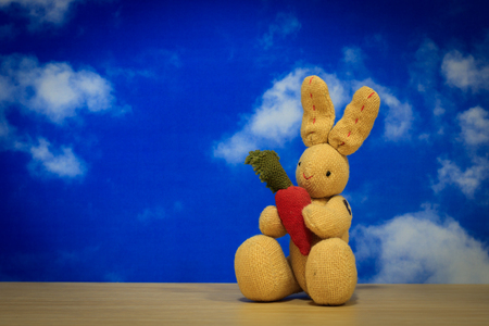 little lovely rabbit holding a carrot on wooden with blue sky background