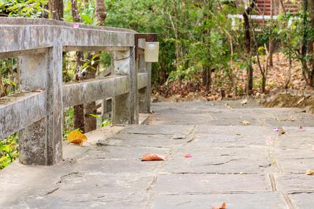 The walk in the park 版權商用圖片
