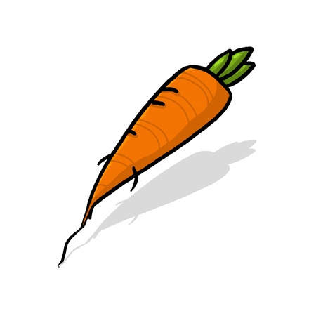Isolated carrot drawing; fresh carrot root  illustration Stock Photo