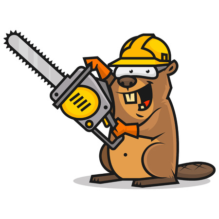 Beaver holds chainsaw