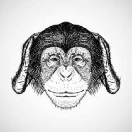 monkey doesn't hear