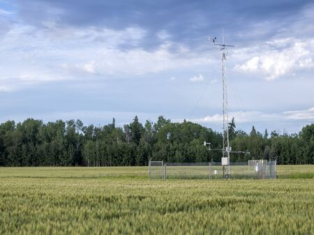 hygrometer: Weather station in a wheat field summer day