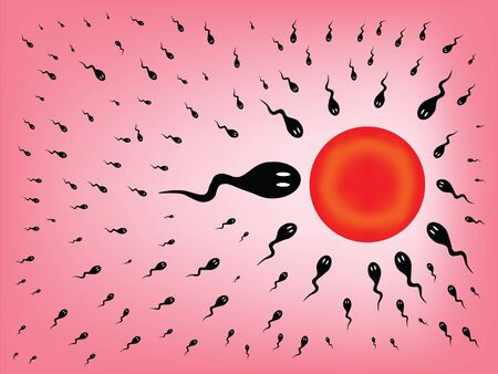 fertility: vector image of an ovule being assaulted by little sperms