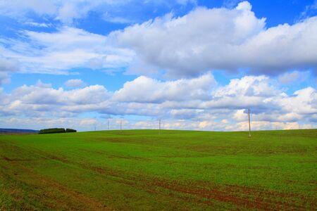 green meadow landscape