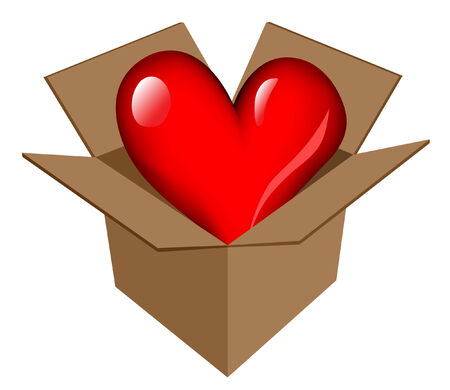 Heart in box icon from `Website & Internet icons` series Illustration