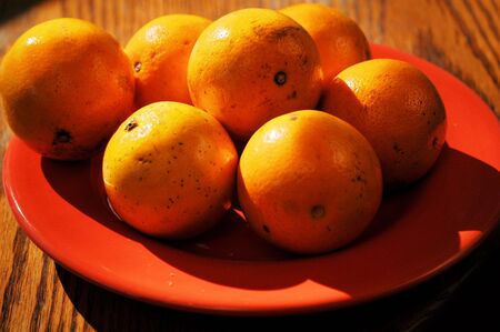 Oranges on a plate ready for grabbing Banco de Imagens