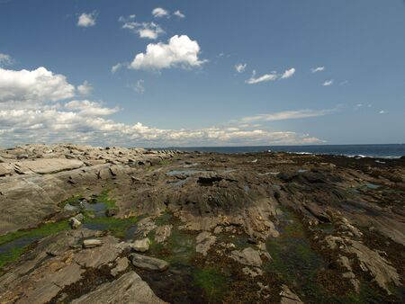 Rocky coast of Maine during the summer months