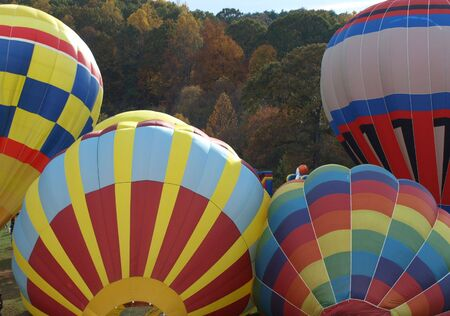 hot air balloons getting ready for liftoff during a fall festival