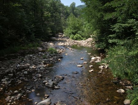Mountain Creek in the woods of North Carolina during the summer photo
