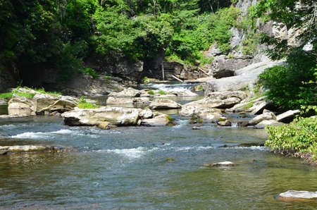 north woods: A mountain stream in the North Carolina woods just below the Linville Falls