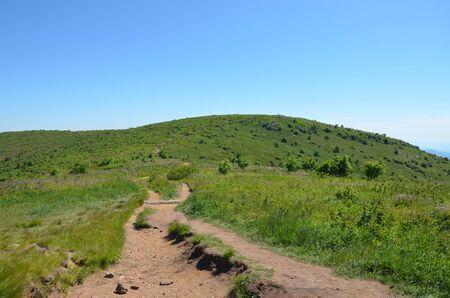 Mountain trail at Black Balsam Bald