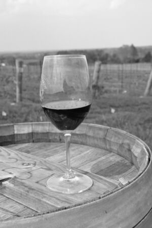 Wine glass on a barrel at a vineyard.
