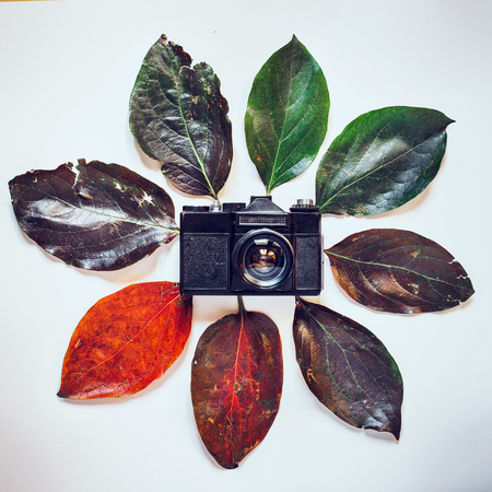 Retro Film Camera surrounded by colorful autumn leaves on white background. Creative concept of time. The visual image of time