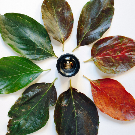 Camera lens surrounded by colorful autumn leaves on white background. Creative concept of time. The visual image of time