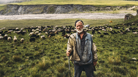 Portrait of shepherd with sheep on a field in the mountains. The concept of modern agriculture and organic products 写真素材 - 117181726