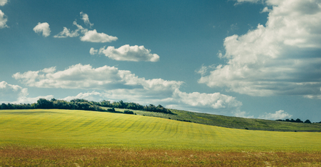 Picturesque rural landscape. Green fields against the blue sky. The concept of suburban life, manual labor and freedom