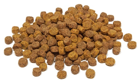 dog food: Dry dog food on white background