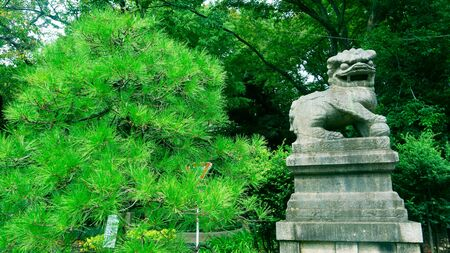 Tokyo / Japan - Sept 16 2018: Komainu often called lion-dogs in English. Yasukuni Shrine is a Shinto shrine located in Tokyo that commemorates Japan's war dead