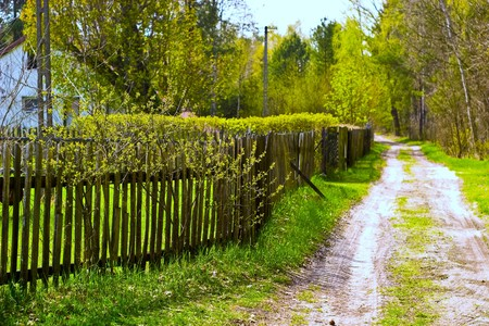 Old concrete boundary fence with nails on sunny day   photo