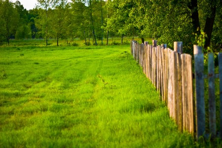 Old wooden boundary fence with nails on sunny day Stock Photo - 7227969