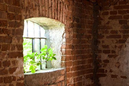 Ausrangierte Ruine mit alten Fenster und Wand, industrielle Fenster in Betonwand    Standard-Bild