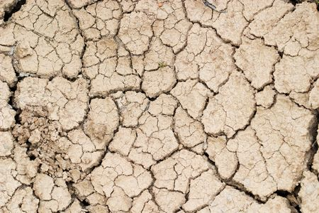 Dry cracked ground filling the frame as background Imagens - 7519483