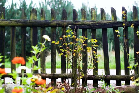 Old wooden boundary fence with nails on sunny day Stock Photo - 7755612