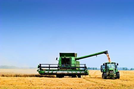 yellow  agriculture: maquinaria de agicultural de trabajo en un d�a soleado, serie de maquinaria