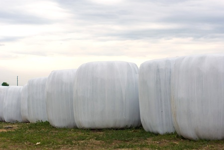 silage, bales, hay bales, plastic wrap cover for wheat cereal bales outdoor
