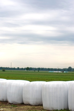 silage, bales, hay bales, plastic wrap cover for wheat cereal bales outdoor photo