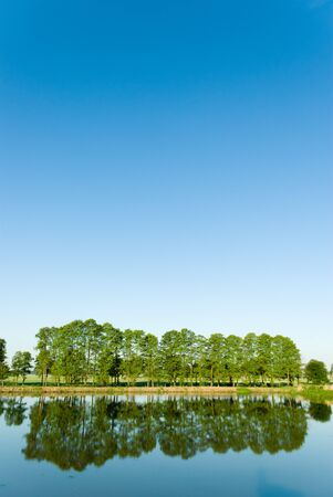 A rural small lake and a green forest Stock Photo - 9660655