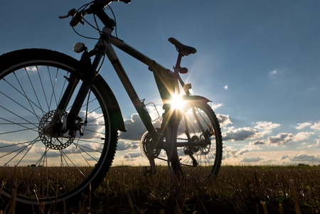 bike ride: color bike in sunny day, bike series,
