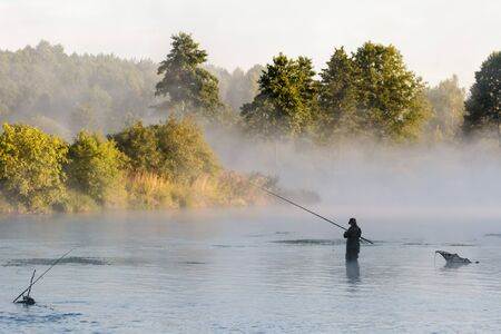fly fish: fishing, fishing in a lake, nature series