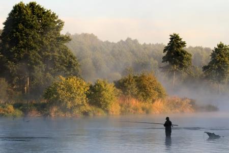 fly fishing: fishing, fishing in a lake, nature series