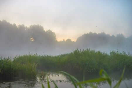fog forest: landscape with natural foggy river, nature series Stock Photo