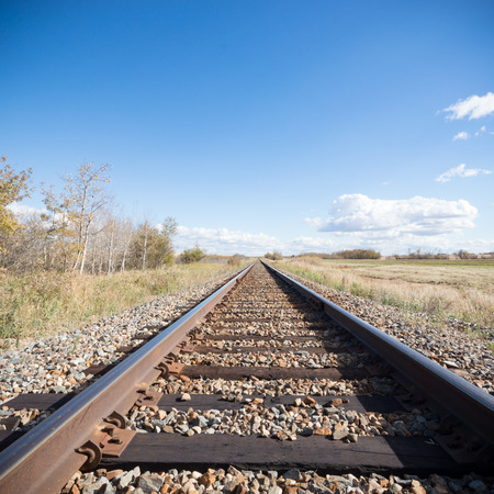 complicated journey: view of the railway track on a sunny day
