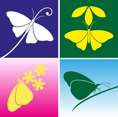 butterfly vector: Butterfly vector Illustration