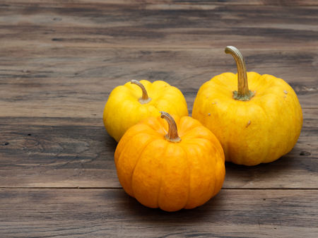 Big and small yellow pumpkins and one medium orange pumpkin on dark wooden background show colorful pattern and scale used in Halloween, still life, kitchen, and comparison, and country themes