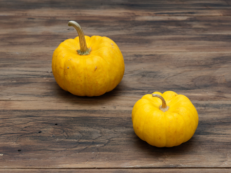Big and small yellow pumpkins put diagonally on dark wooden background show colorful pattern and scale used in Halloween, still life, kitchen, and comparison, and country themes Archivio Fotografico