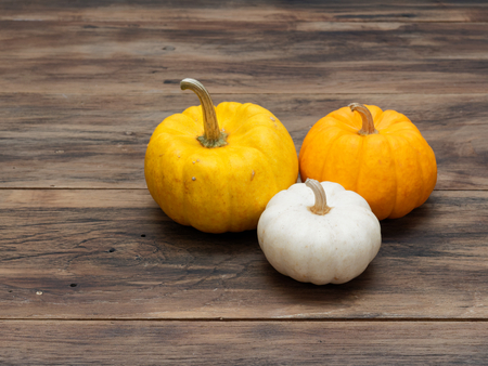 Small white, medium yellow, and big orange pumpkins put in a group on dark wooden background show colorful pattern and scale used in Halloween, still life, kitchen, and comparison, and country themes