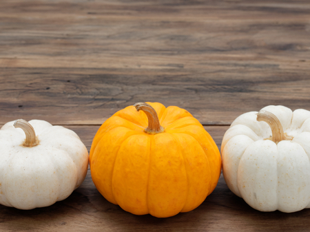 White and orange pumpkins put horizontally on dark wooden background show colorful pattern and scale used in Halloween, still life, kitchen, and comparison, and country themes