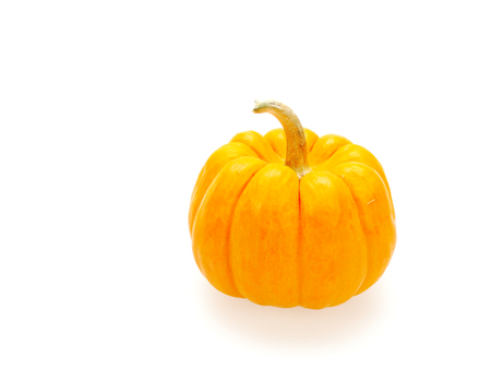 One orange pumpkin isolated on white background show colorful pattern and scale used in Halloween, still life, kitchen, and comparison themes