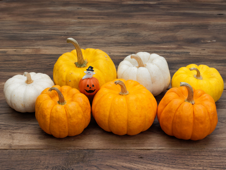 Orange miniature decoration ceramic pumpkin with white ghost and big and small white, yellow, and orange pumpkins on dark wooden background used in Halloween, still life, kitchen, and decoration