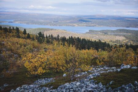 Swedish autumn fall vibrant landscape during hiking to Kurravaara mountain in Norrbotten county, Kiruna Municipality, Northern Sweden