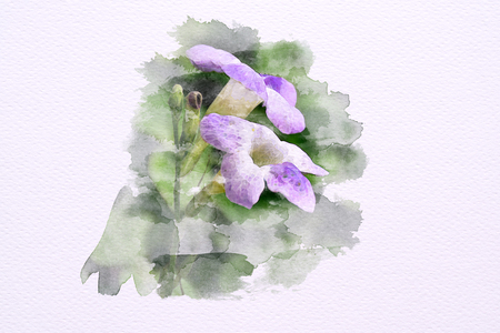 Watercolor of Violet flower Purple flowers on 100 lb paper. Illustration Imagens