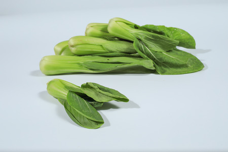 Bok choy (Brassica rapa) from the garden, isolated on white background