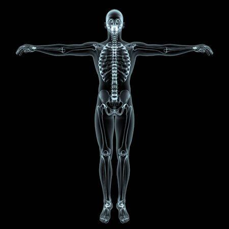 human body Stock Photo - 9403316