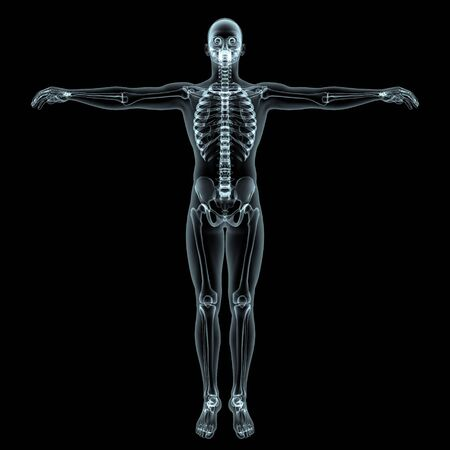 human body Stock Photo - 9403316
